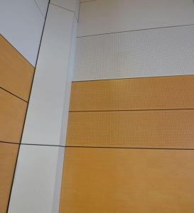 Detail of panels at Denison Collage gym Bathurst