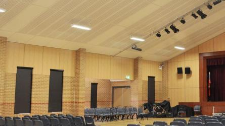 Cost effective acoustics for broad areas<br>of walls & ceilings